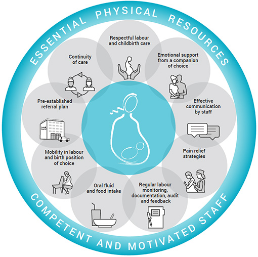 WHO birth practices circle-graphic